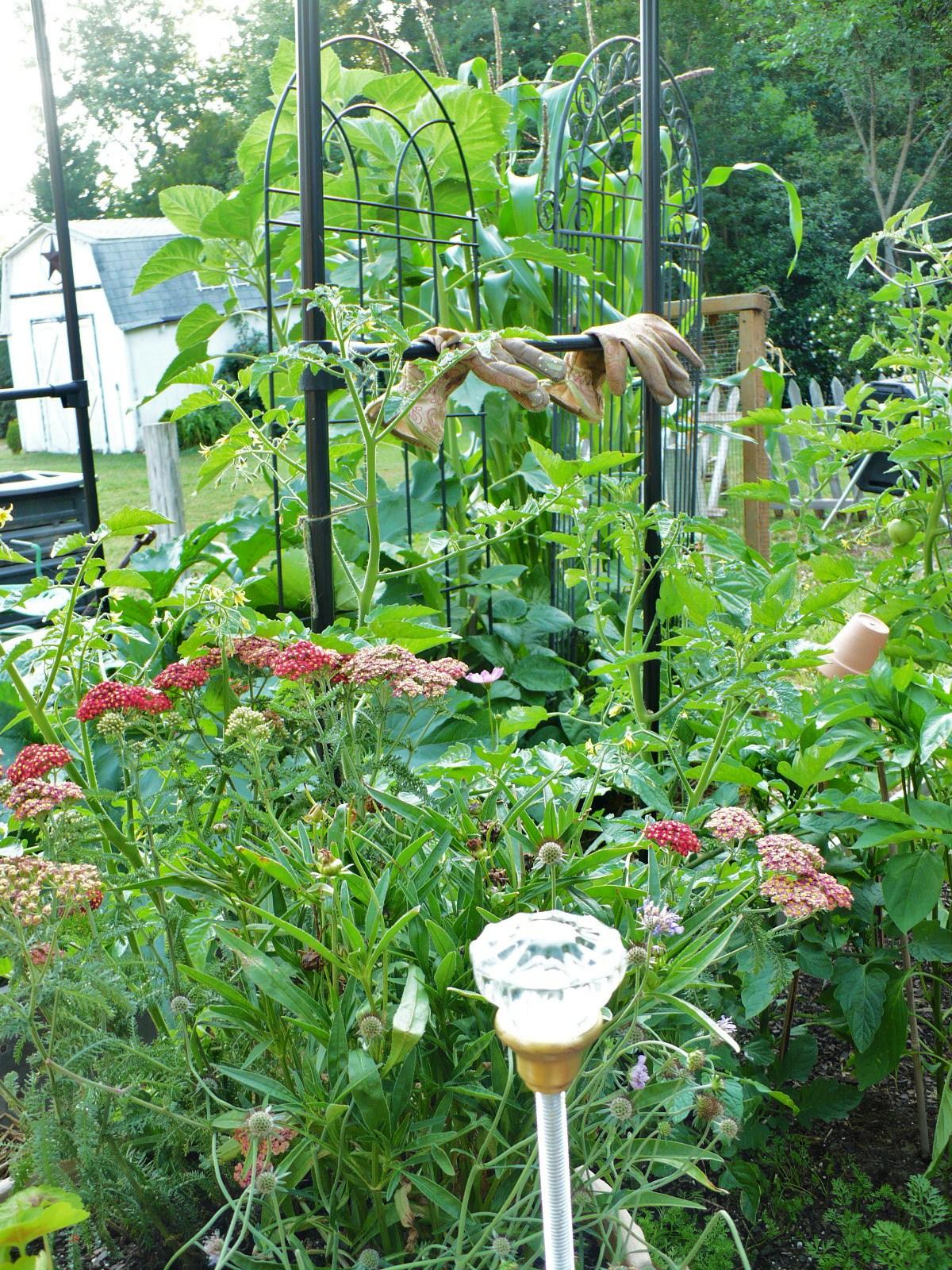 Blinged DIY Garden Hose Guides
