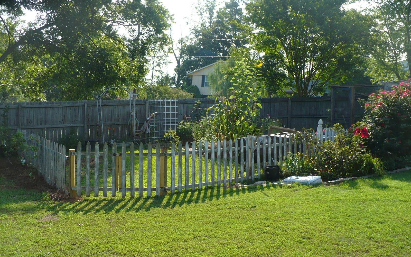 Picket Fence Around A Vegetable Garden