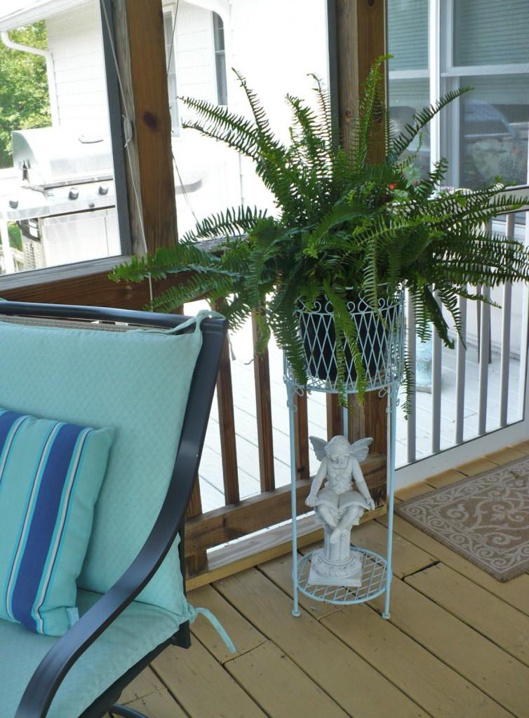 fern in blue wire planter