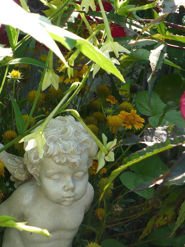 garden cherub in a cottage garden border