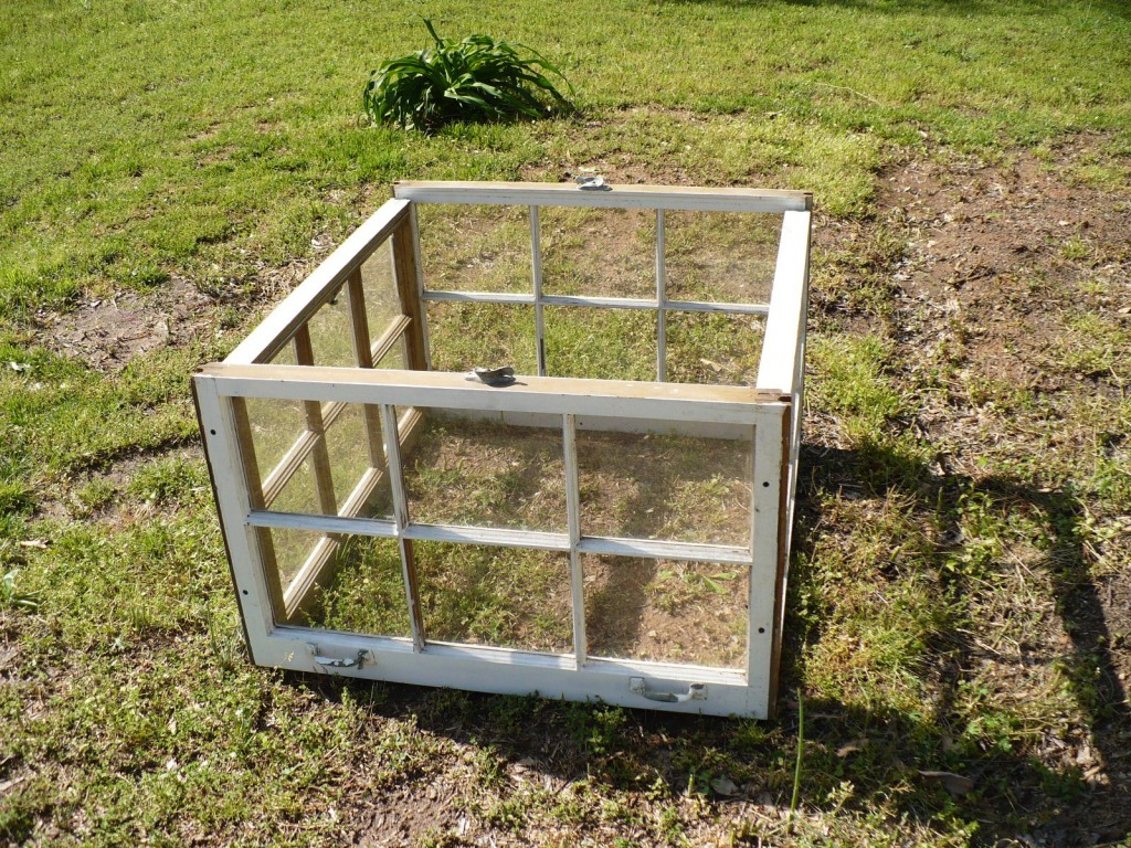 upcycle windows into garden sructure