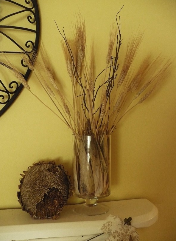 sunflower head from the garden used for fall decor