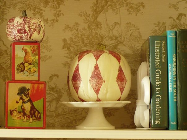 red and white harlequin pumpkin