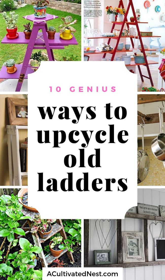 Fun Ways to Use Old Ladders In Your Home- Instead of throwing away old ladders, upcycle then instead with these clever DIY ladder projects! There are so many ways to repurpose old ladders! | ladder decor tutorial, how to use old wooden ladders, #DIY #upcycle #repurpose #ACultivatedNest