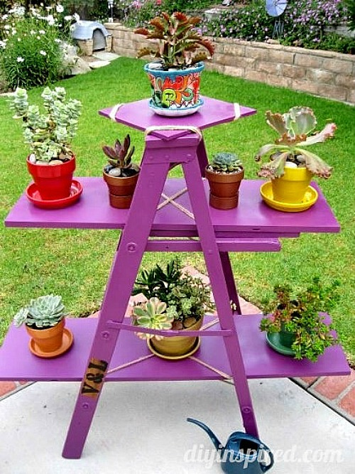 upcycled ladder for garden display