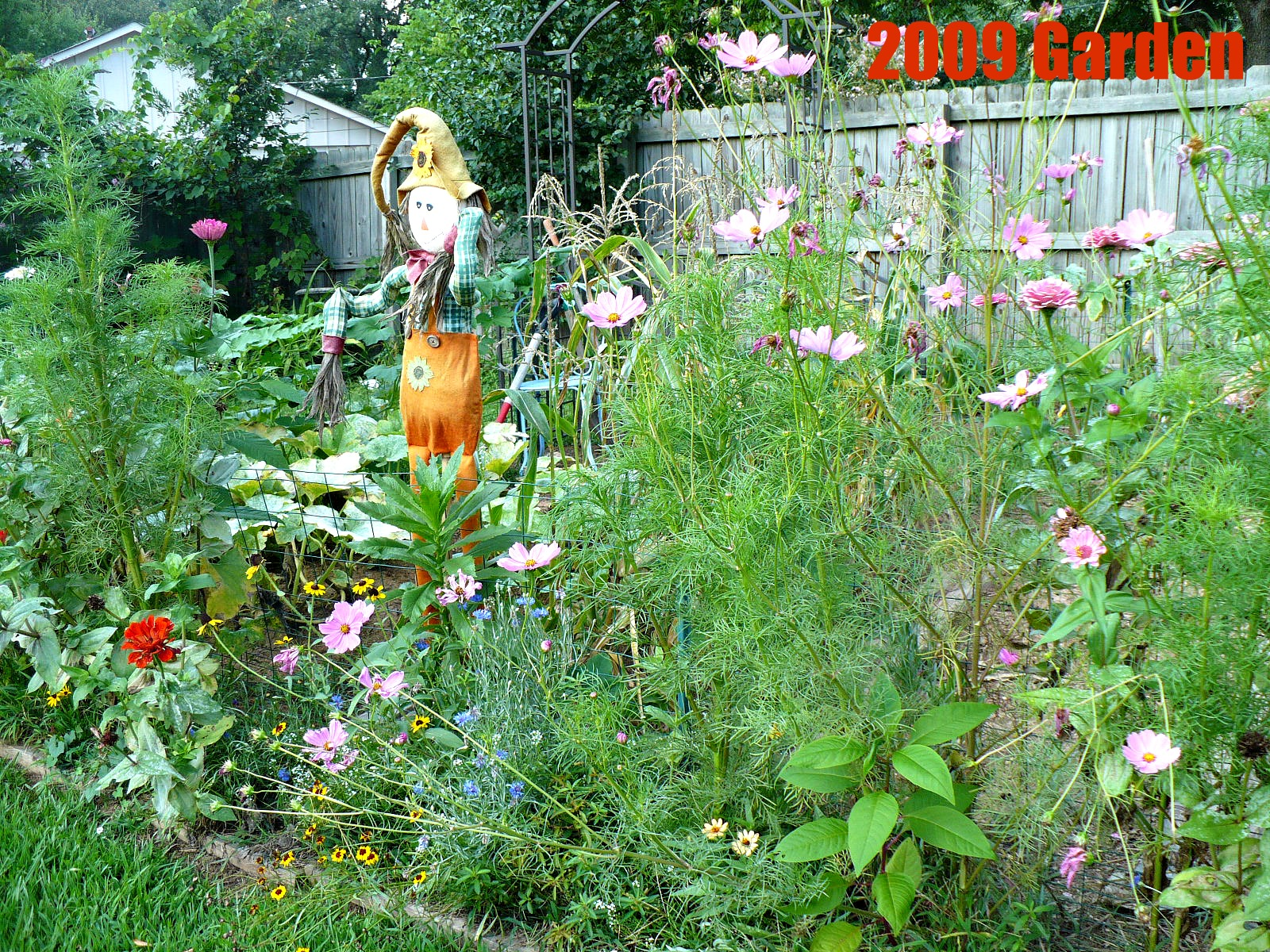 Beautiful vegetable and flower gardens - Vegetables Mixed With Flowers