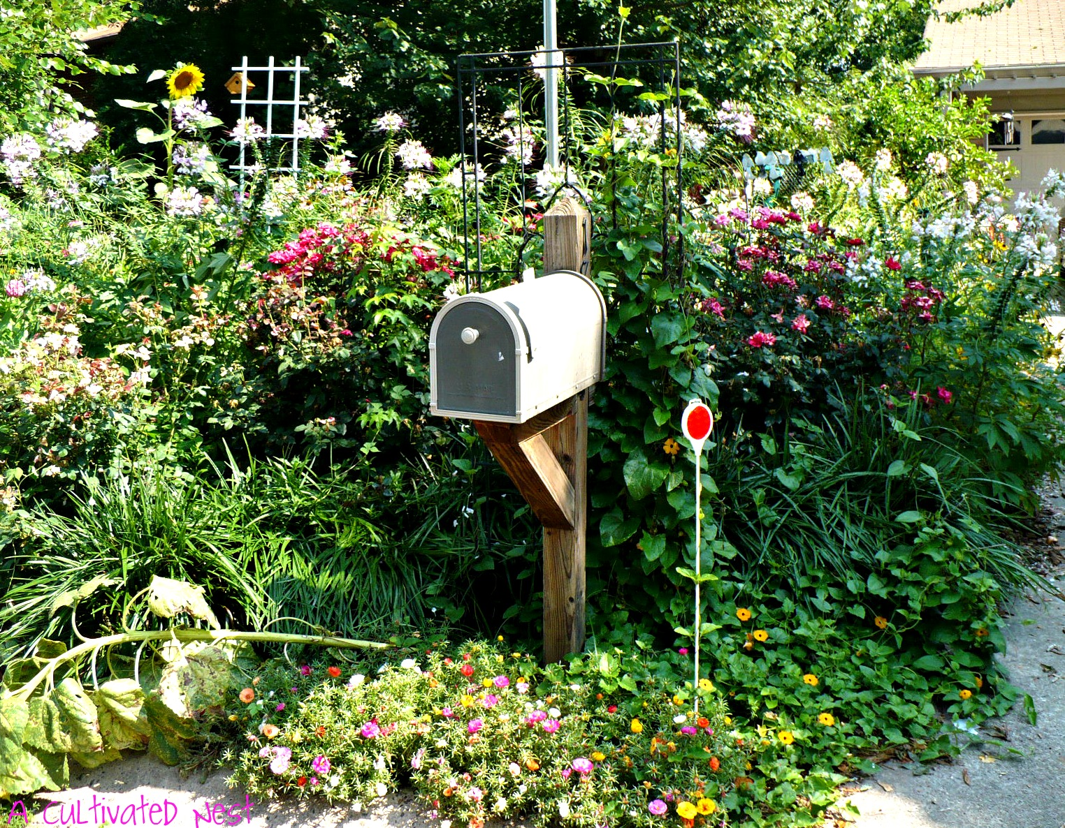 Cottage Style Garden Ideas i like the feel of prairie or cottage style gardens the bestrambling My Neighbors Cottage Style Mailbox Planting