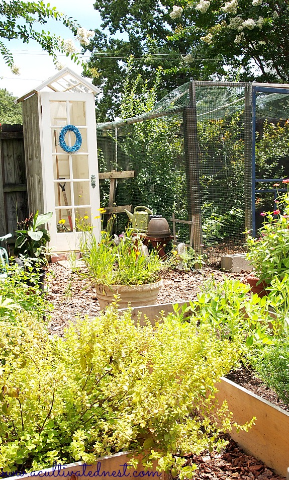 garden shed in a raised bed vegetable garden