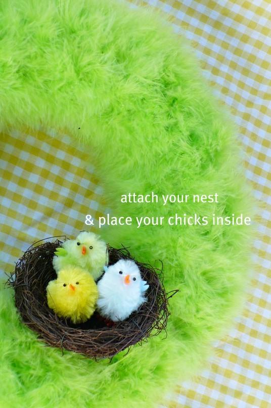 bird nest with chicks in it