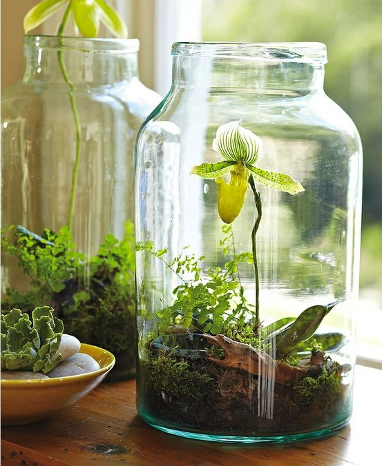 10 Ways To Upcycle Glass Bottles Jars A Cultivated Nest