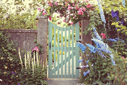 garden gate ideas - pale blue garden gate