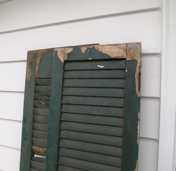 chippy outdoor shutters