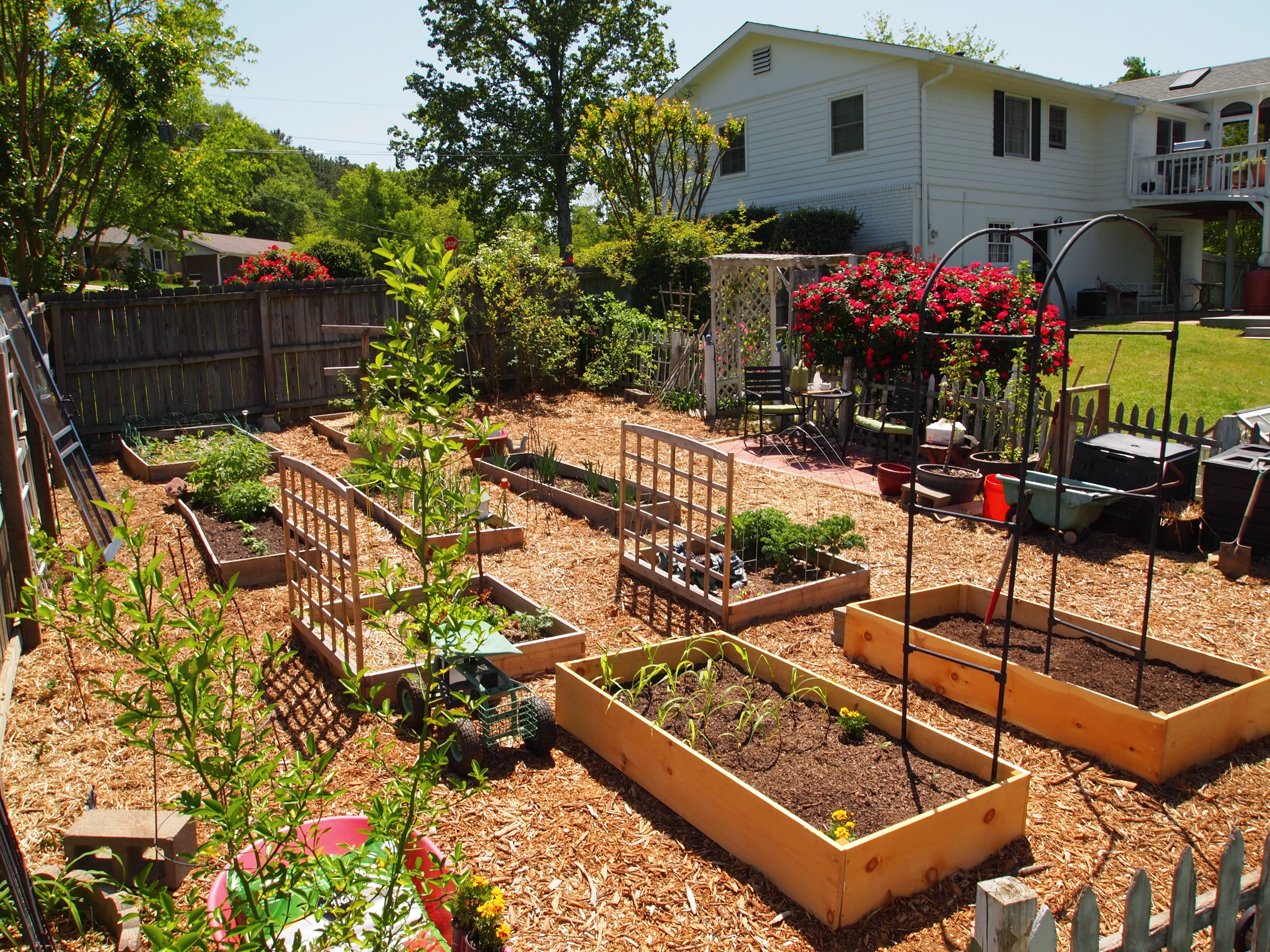 What will my garden grow a cultivated nest for Backyard vegetable garden design ideas