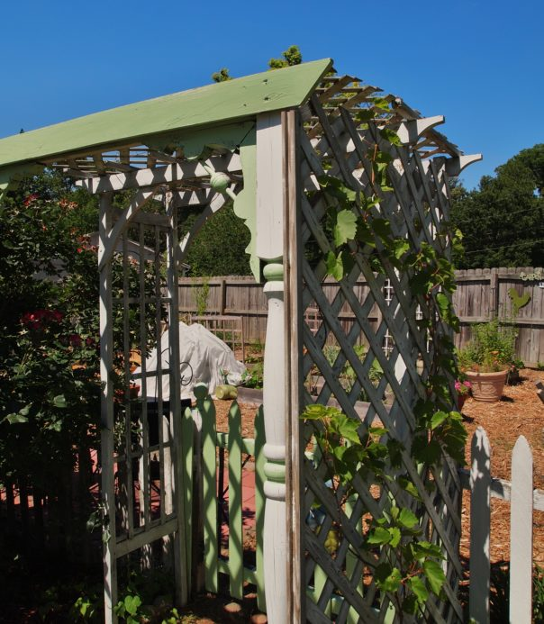 arbor around gate