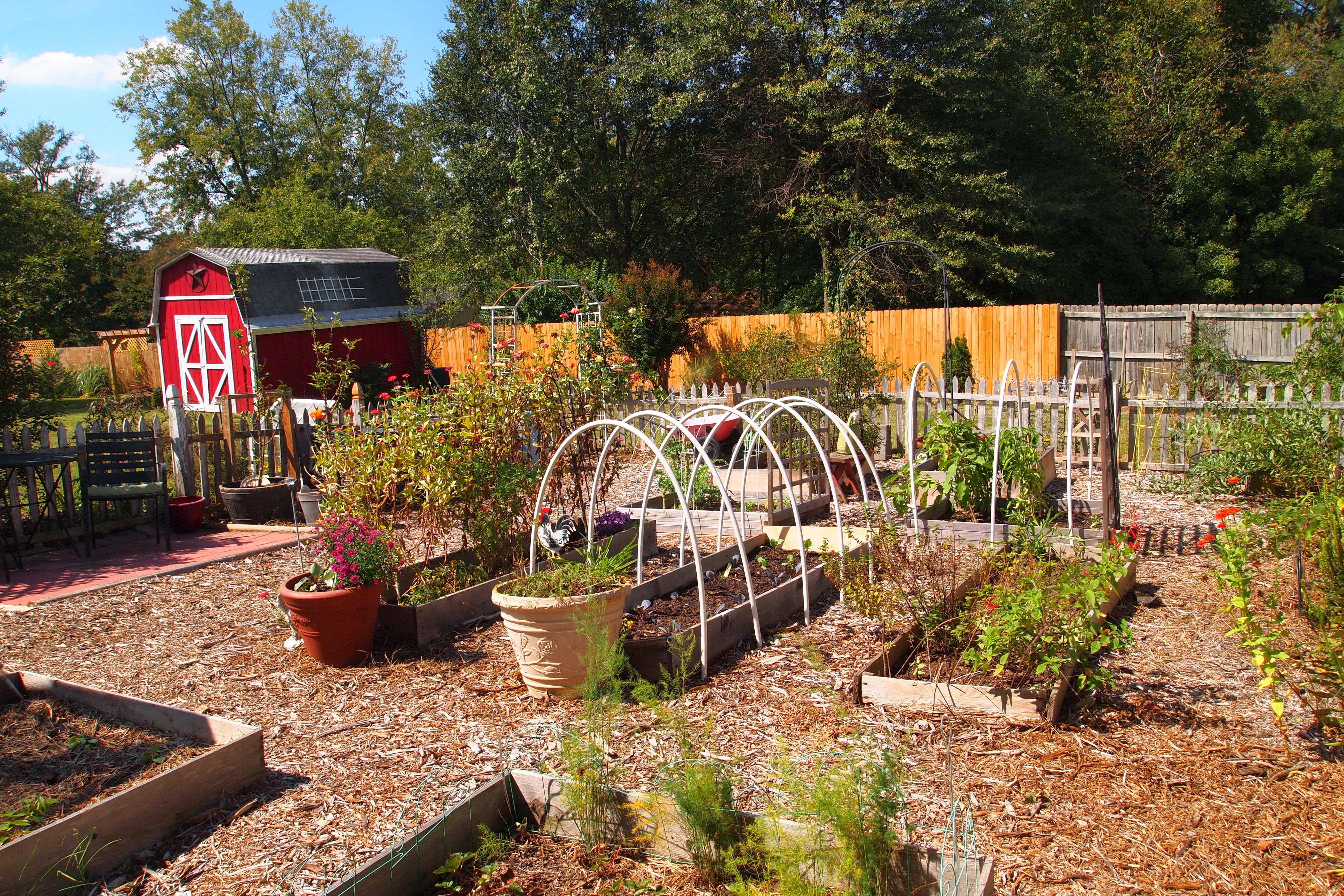 My Largest FallWinter Vegetable Garden Ever A Cultivated Nest