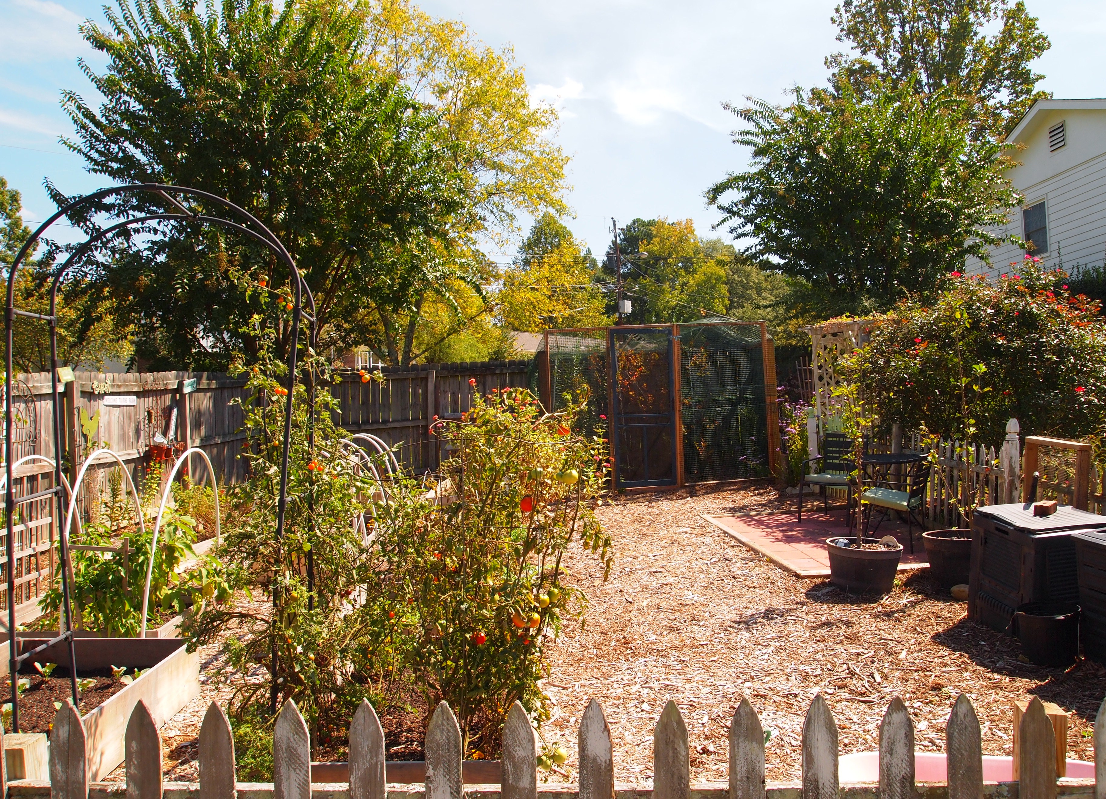 My Largest Fall/Winter Vegetable Garden Ever! - A Cultivated Nest