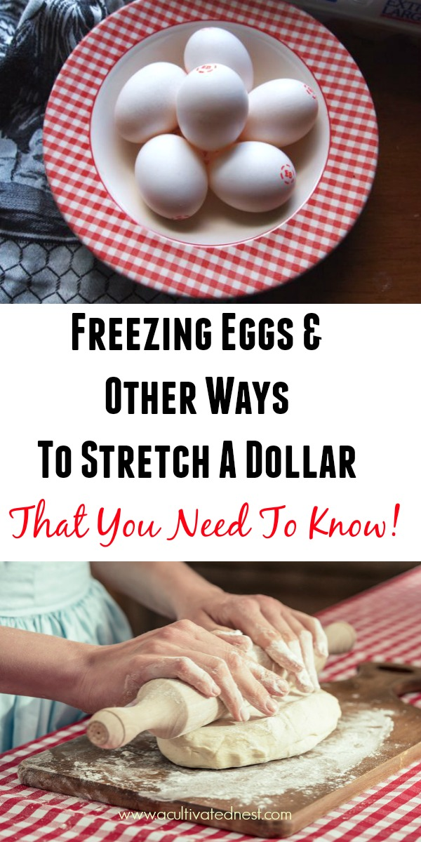 How To Stretch A Dollar - Freezing eggs & other money saving tips that you need to know! I'm always looking for ideas on how to stretch a dollar! So I found some money saving tips that were new to me and thought I'd share. #frugal #frugalliving #moneysavingtips #thrfity #acultivatednest