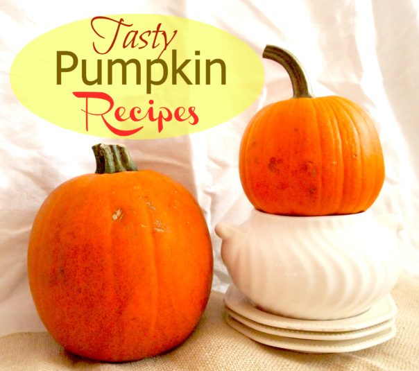 Pumpkin Recipes via A Cultivated Nest