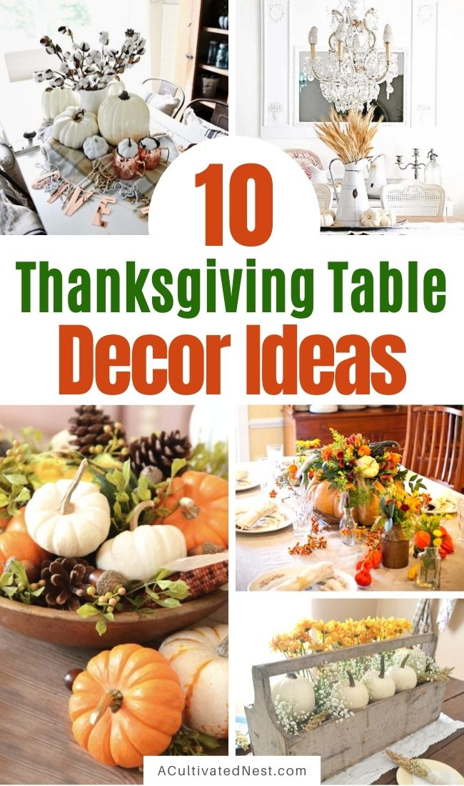 10 Inspired Ideas for Your Thanksgiving Table- Transform your space with these inspired ideas for your Thanksgiving table. They are elegant, gorgeous, and easy to replicate, too! | #Thanksgiving #ThanksgivingCenterpiece #ThanksgivingDecor #ThanksgivingTable #ACultivatedNest