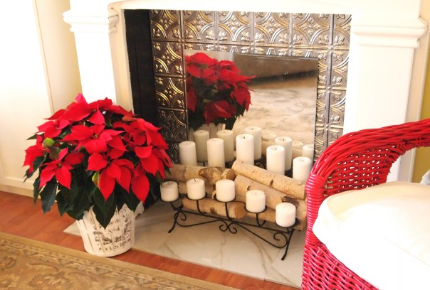 planter with poinsettia A Cultivated Nest
