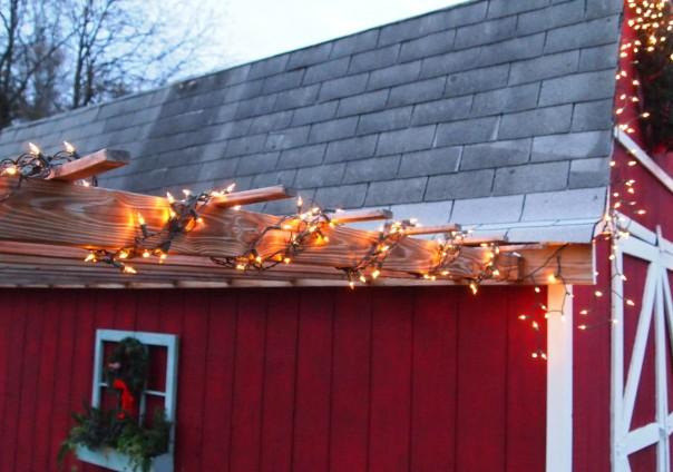 lights on arbor