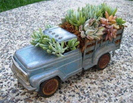 truck with succulents