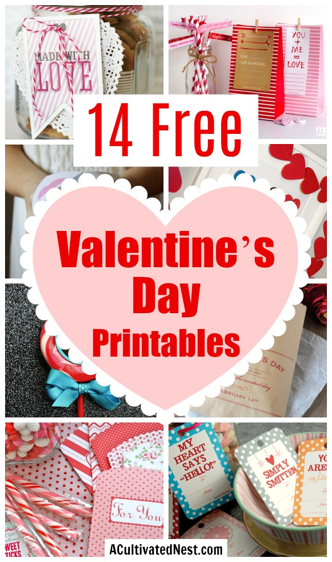 14 Free Valentine's Day Printables- Make Valentine's day special for your loved ones with these free Valentine's Day printables! This great roundup includes printable gift tags, wall art, and more! | printable Valentine's tags, Valentine's Day labels, Valentine's printable, #ValentinesDay #freePrintables #ACultivatedNest