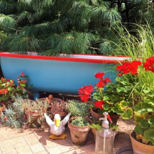 DIY Garden Bathtub- Using an old bathtub as a container garden is easy, beautiful, and useful, too. They can hold a lot of plants and enhance your design! | upcycle bathtub, recycle bathtub, ways to use a vintage bathtub, #gardeningTips #gardenDIY #containerGarden #gardeningDIY #ACultivatedNest