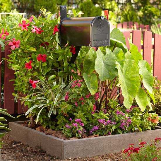 Mailbox garden in a raised bed