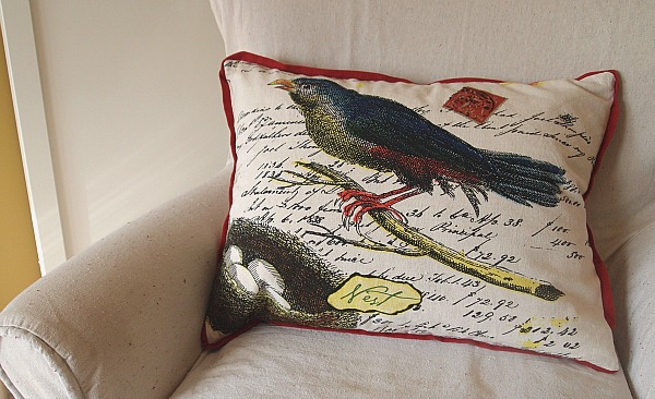 bird & nest pillow