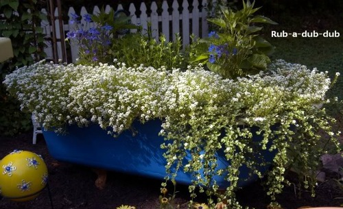 Using An Old Bathtub As A Container In Your Garden A Cultivated Nest
