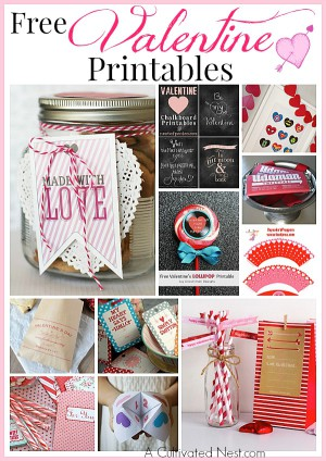 14 Free Valentine's Day Printables  - lots of different types of printables for Valentine's Day!