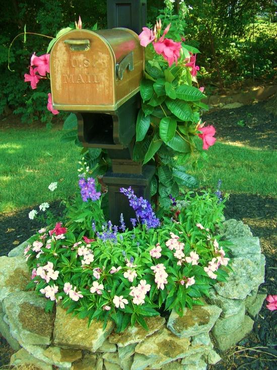 mail box garden