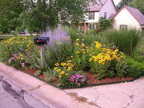 mailbox_garden