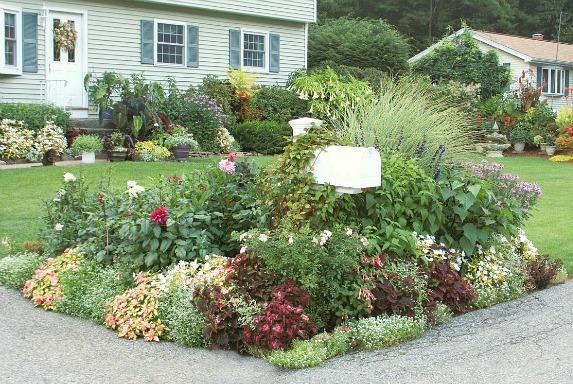 street side mailbox garden