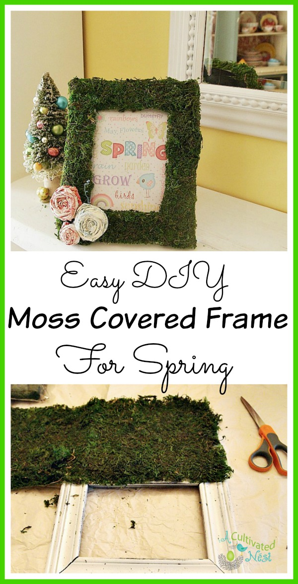 Easy DIY moss covered frame for spring!
