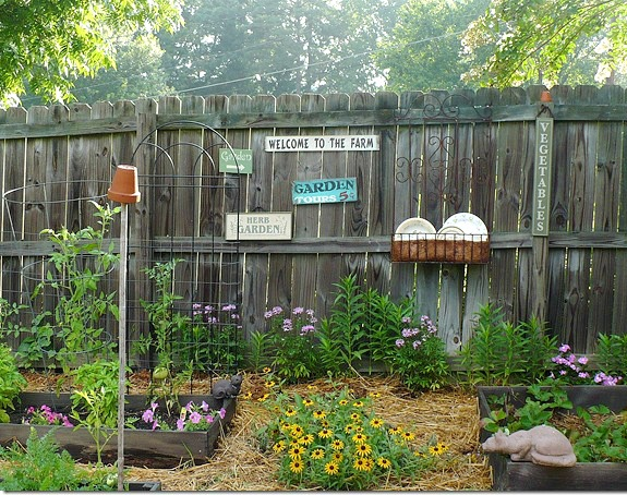 Adding Flowers to Your Vegetable Garden – How to Attract Pollinators and why that's important