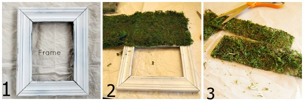 steps for making a moss covered frame
