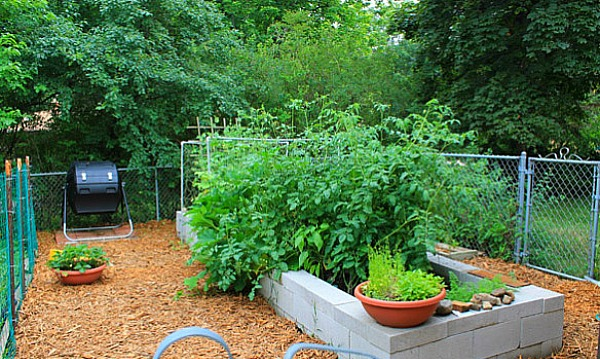 How To Make A Raised Bed Using Concrete Blocks - finished raised bed planted with vegetables