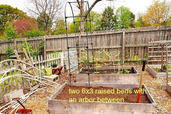 two 6x3 raised beds