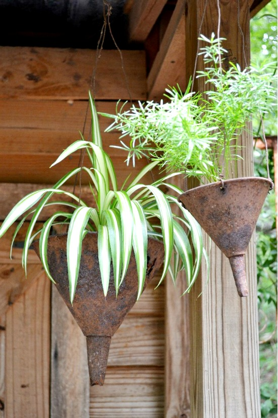 Creative garden containers - funnel used as a  planters