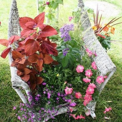 old chair used as a planter