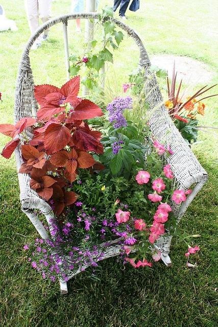 Conteneurs de jardins créatifs - ancienne chaise utilisée comme planteuse