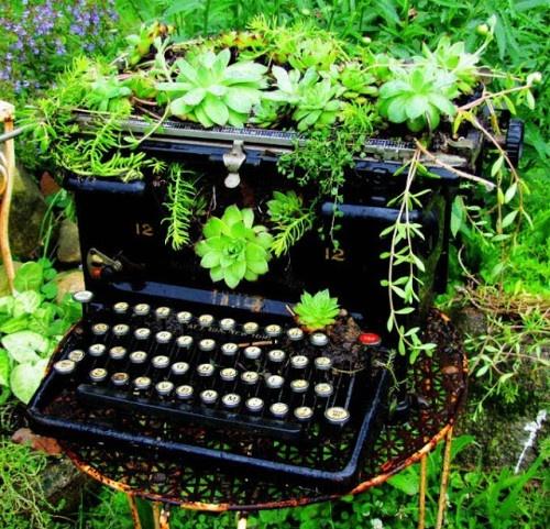 typewritter used as planter