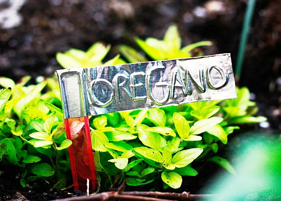 11 Creative Plant Marker Ideas- Aluminum tape plant markers | how to label plants in your garden, label your herbs #gardening #DIY #garden #craft