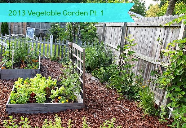 Pictures Of Backyard Vegetable Gardens : backyardvegetablegardenjpg