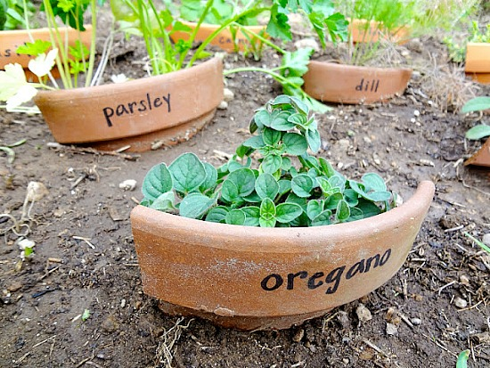 11 Creative Plant Marker Ideas- Broken clay pot plant markers | how to label plants in your garden, label your herbs #gardening #DIY #garden #craft