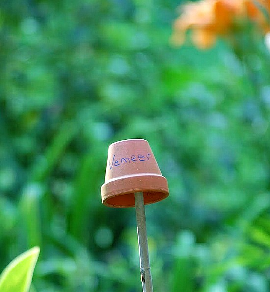 11 Creative Plant Marker Ideas- Tiny clay pot garden markers | how to label plants in your garden, label your herbs #gardening #DIY #garden #craft