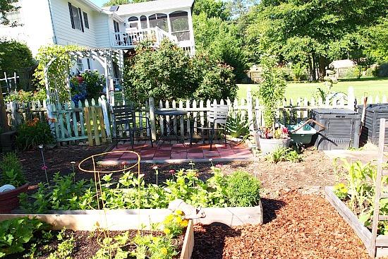 patio in vegetable garden