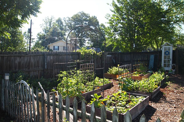 vegetable garden tour